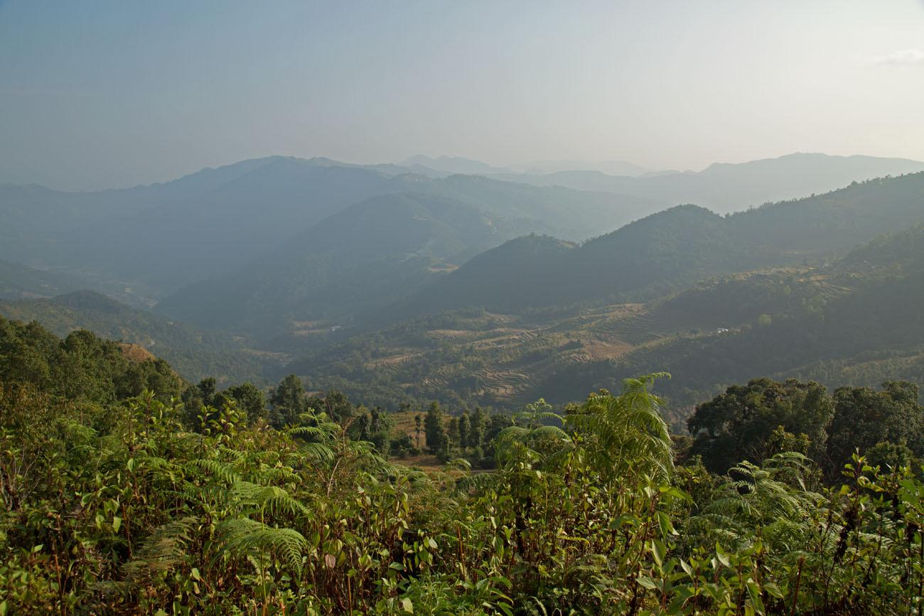 NEPALBHUNDI1
