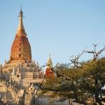 MYANMARBAGAN13