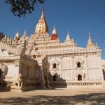 MYANMARBAGAN35