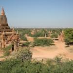 MYANMARBAGAN51
