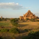 MYANMARBAGAN54