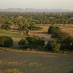 MYANMARBAGAN59