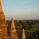 MYANMARBAGAN60