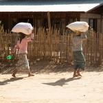 MYANMARBAGANCAMPAGNE42