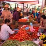 MYANMARHEHO42