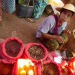 MYANMARHEHO45