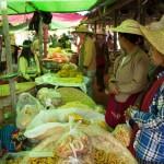 MYANMARHEHO52
