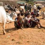 MYANMARHEHO63