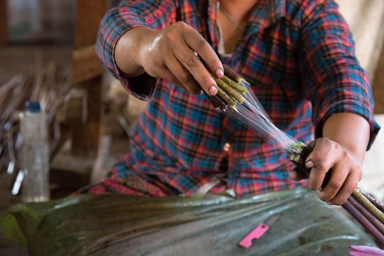 MYANMARINLE1 7