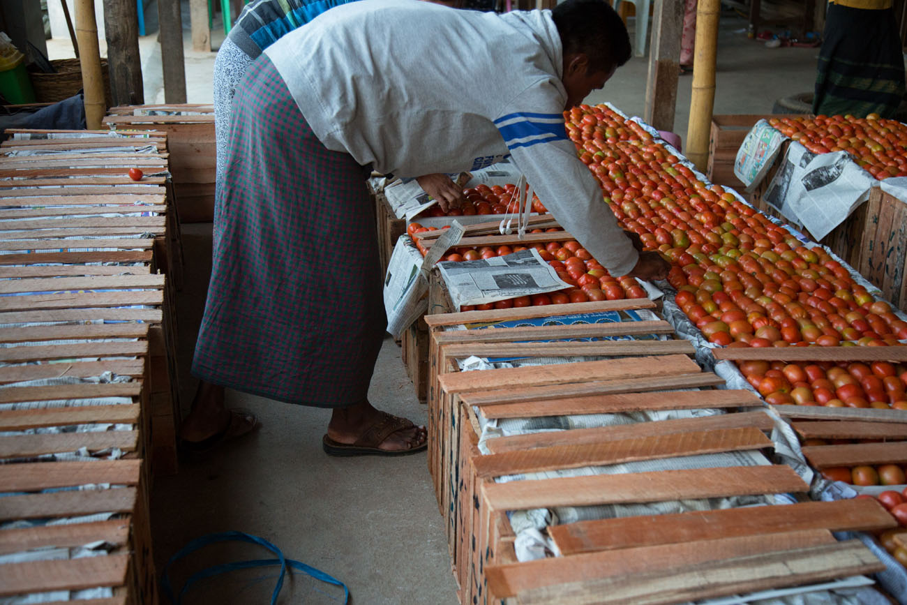 MYANMARINLE2 106