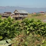 MYANMARINLE3 45