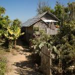 MYANMARINLE3 50