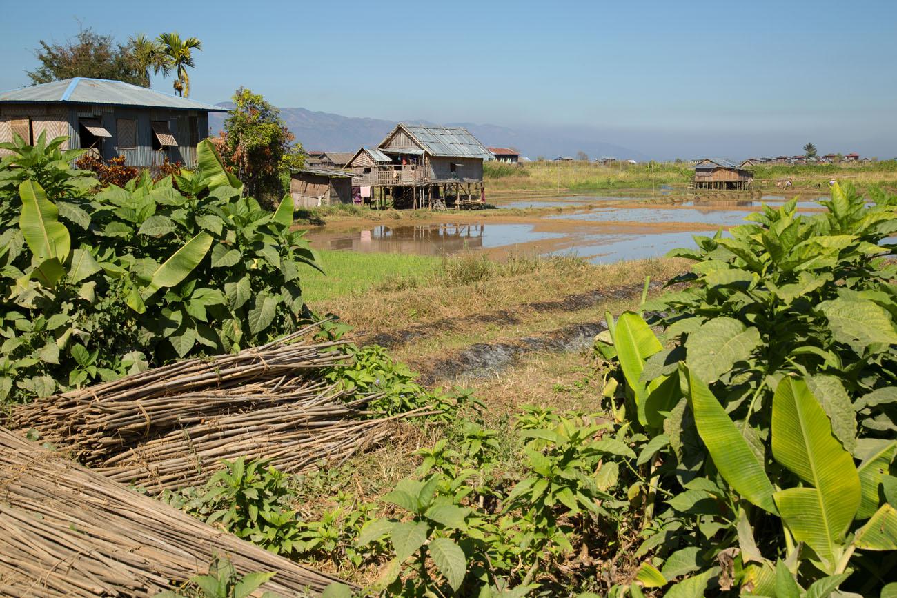 MYANMARINLE3 63