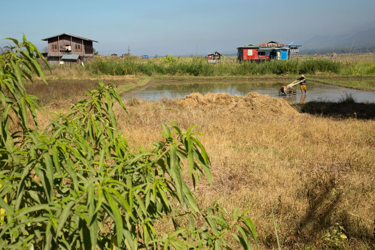 MYANMARINLE3 64