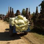 MYANMARINLE5 21