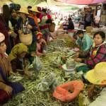 MYANMARPAL31
