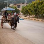 MYANMARPINDAYA37