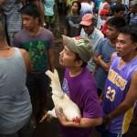 PHILIPPINESDONSOL33