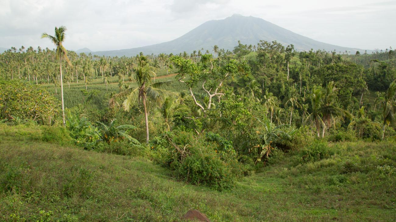 PHILIPPINESVIVIAN64