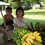 SAMOASAVAII31