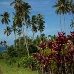 SAMOAUPOLU15