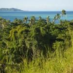 FIDJIMANAISLAND15