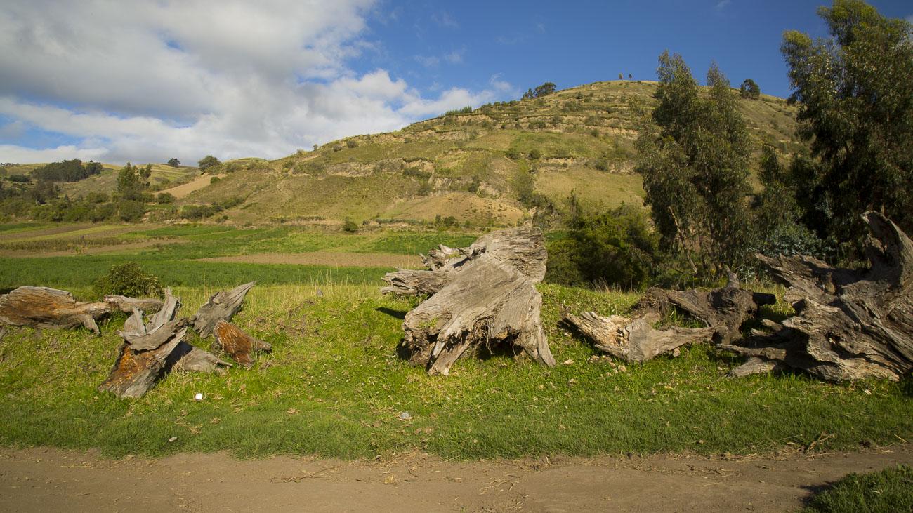 EQUATEURROSARIO25